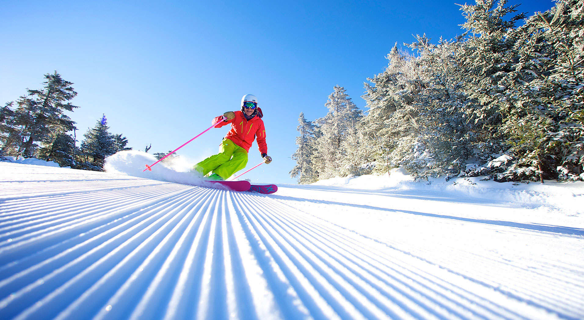 Female skier smiling on the hill with snowy trees and perfect snow