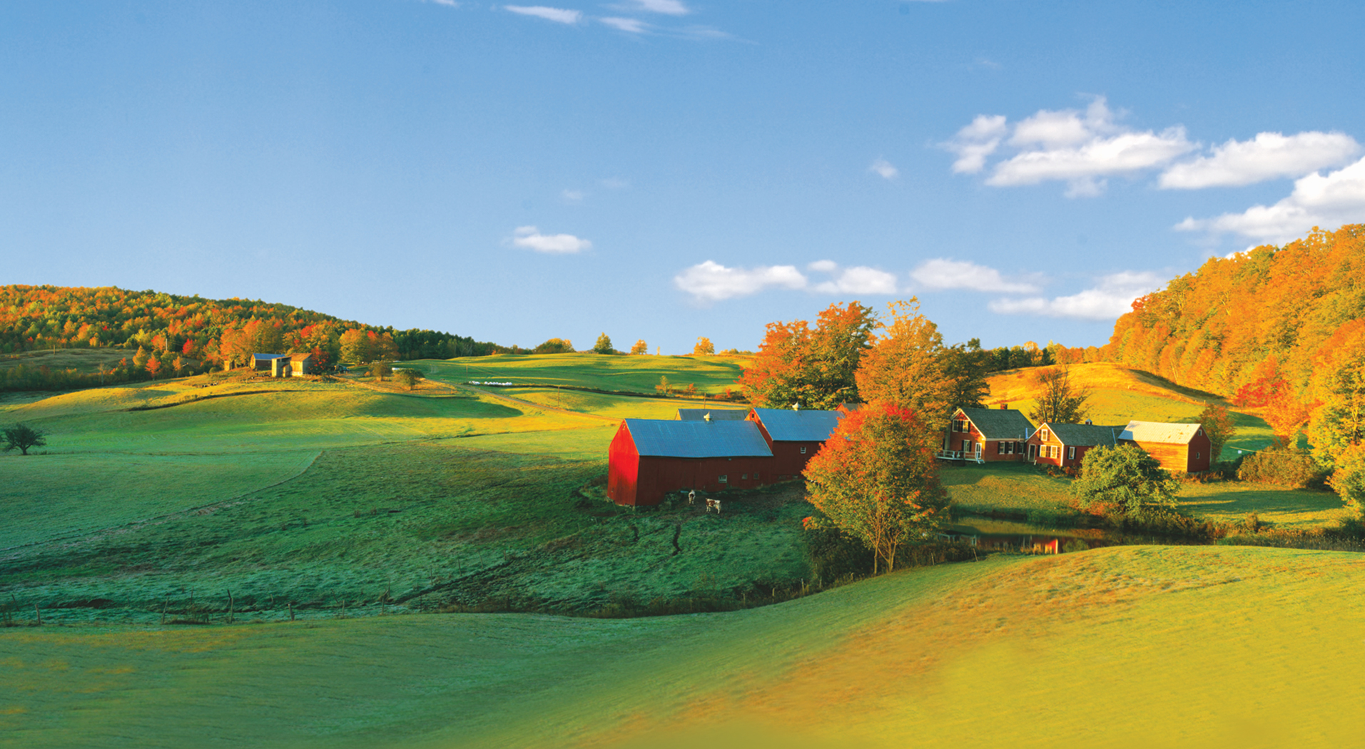 farm scene artwork with fields, hills and trees