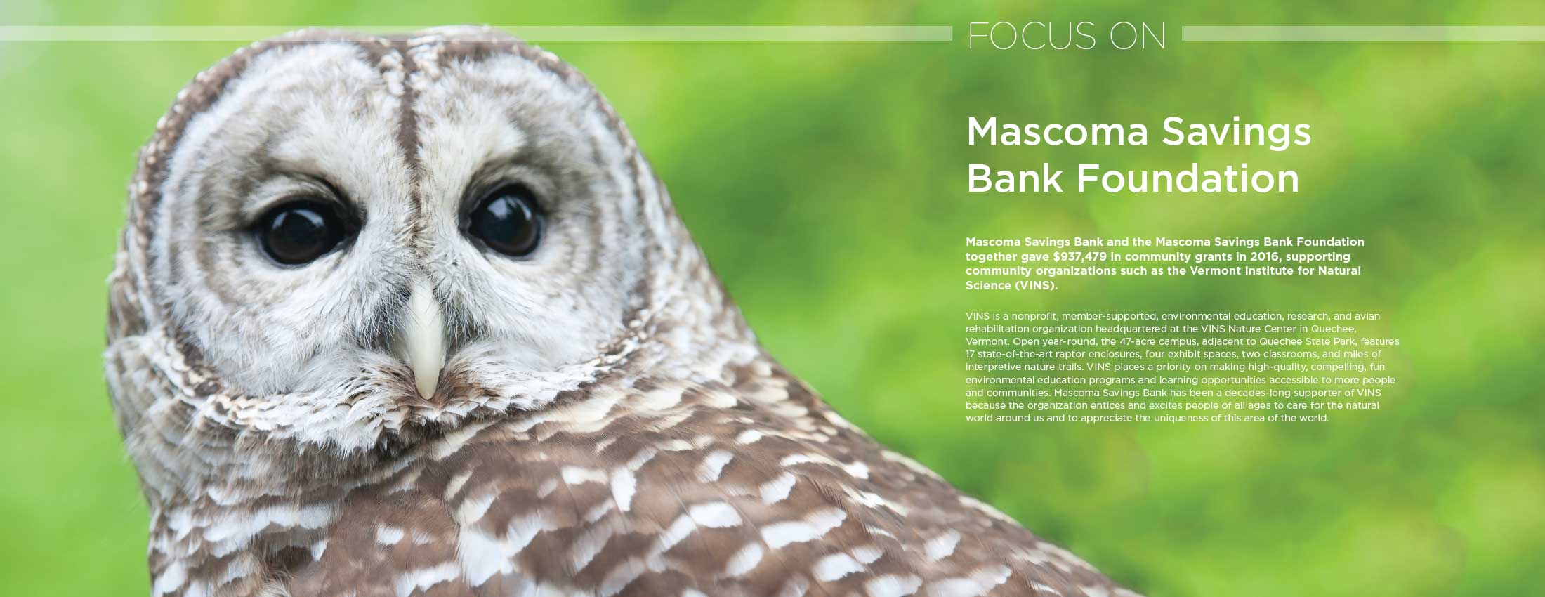 Bard owl looking at camera with copy on top describing the Mascoma Savings Bank Foundation