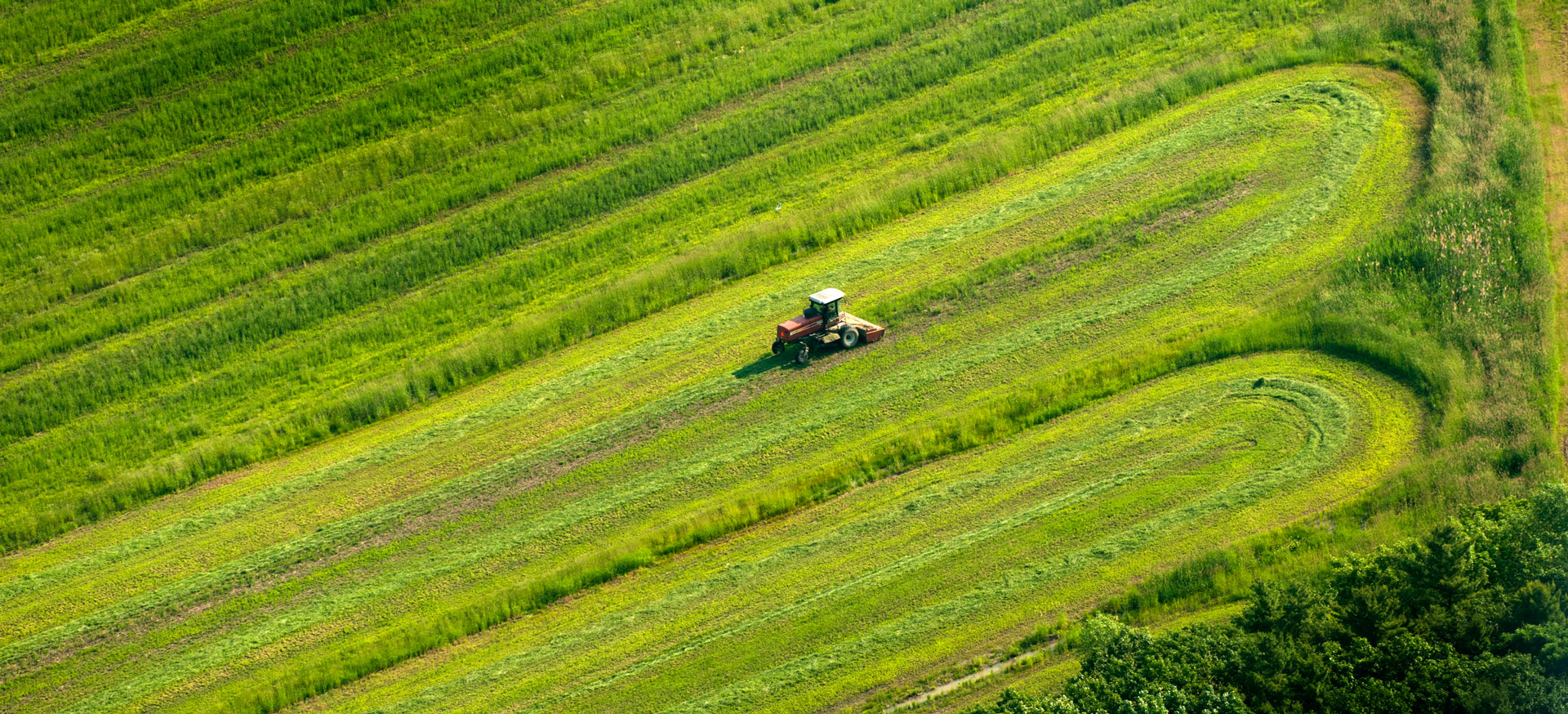 tractor in a big green field view is from a plane